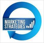 پاورپوینت-استراتژی-بازاریابی-در-مرحله-بلوغ-و-افول-بازار