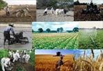 پاورپوینت-نظام-تأمين-اجتماعي-در-كشاورزي
