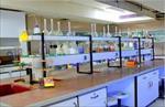 گزارش-کار-آزمایشگاه-رنگرزی-با-موضوع-الیاف-پشم-و-رنگرزی-آن-با-مواد-رنگزای-اسیدی