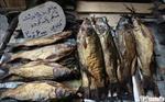 طرح-توجیهی-تولید-دودی-کردن-و-شورکردن-ماهی