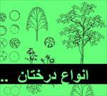 مجموعه-سمپل-درخت-در-اتوکد