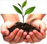 تحقیق-جنبه-های-زیست-جغرافیایی-و-تکاملی-دوره-خواب-گیاهان