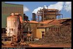 تحقیق-کنترل-میکروبیولوژیک-در-کارخانه-نیشکر-افزایش-کیفیت-شکر-و-کاهش-ضایعات
