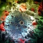 تحقیق-اپیدمی-و-اکولوژی-ویروس-ها
