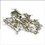 شیپ-فایل-روستاهای-استان-لرستان