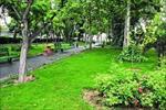 پاورپوینت-تاسیسات-و-زیرساخت-های-شهری-(فضای-سبز)