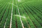 پاورپوینت-اقتصاد-و-مدیریت-کشاورزی