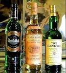 تحقیق-الکل