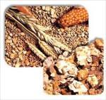 دانلود-طرح-توجیهی-تولید-خوراک-دام-و-طیور