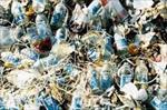 پاورپوینت-تاثیر-زباله-های-بیمارستانی-برمحیط-زیست