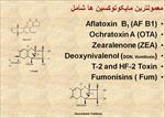 پاورپوینت-اهمیت-و-کاربرد-مایکوتوکسین-بایندر-در-صنعت-دامپروری