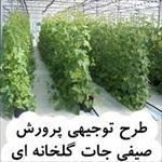 دانلود-طرح-توجیهی-پرورش-صیفی-جات-گلخانه-ای
