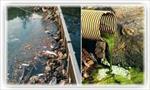 پاورپوینت-منابع-آلاینده-آب