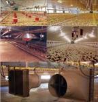 پاورپوینت-سیستم-های-گرمایش-و-سرمایش-در-سالن-هاي-پرورش-جوجه-هاي-گوشتي
