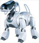 تحقیق-آموزه-هایی-از-رباتیک