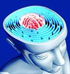 تحقیق-طرحواره-درمانی-(schema-therapy)