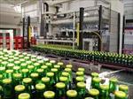 گزارش-طرح-توجیهی-فنی-و-اقتصادی-تولید-ماءالشعیر