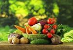 مطالعات-امكان-سنجي-مقدماتي-طرح-عمل-آوري-ميوه-و-سبزيجات-به-روش-انجماد-سريع