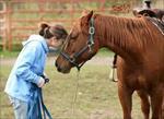 پاورپوینت-رفتارشناسی-اسب