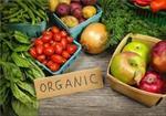تحقیق-کشاورزي-ارگانيک
