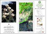 تحقیق-اکوتوریسم-(طبیعت-گردی-ecotourism)