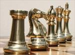 سمینار-با-موضوع-شطرنج