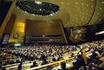 تحقیق-مجمع-عمومی-سازمان-ملل