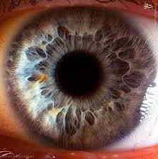 پاورپوینت جراحی های چشم و بیماری های چشم