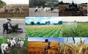 پاورپوینت بررسی نقش دهیاری ها در توسعه روستایی