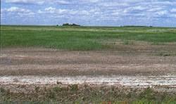 تحقیق طراحی جاده در خاک نمکی