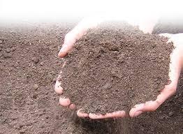 بررسی اثر شوری آب بر خصوصیات ژئوتکنیکی خاک های ریزدانه